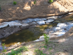 A closer view of the stream bank restoration work